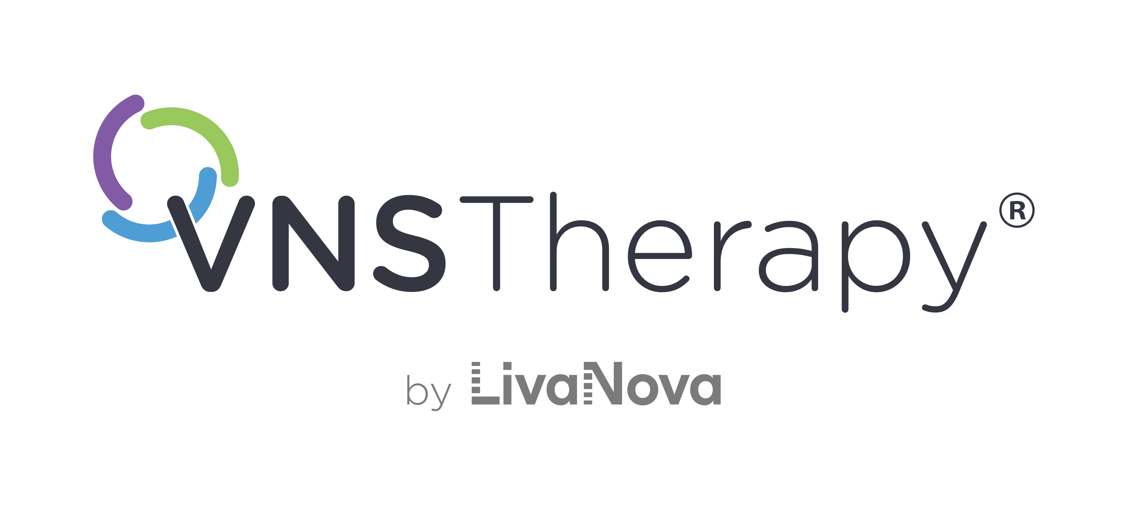 VNS Therapy logo.