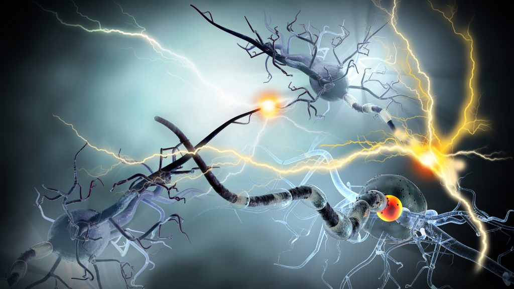 electrical surges from inside a human brain